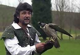 Stag and Hen Falconry Experience
